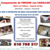 CAMPAMENTOS DE VERANO CON CABALLOS